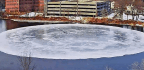 'Shutdown' Researcher Records Maine's Viral Ice Disk