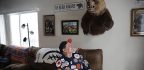 Meet Don Wachter, The Bears Superfan Who Has A Shot At The Pro Football Hall Of Fame