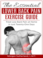 The Essential Lower Back Pain Exercise Guide