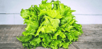 Hot Way To Clean Polluted Soil Passes Lettuce Test