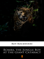 Bomba, the Jungle Boy at the Giant Cataract