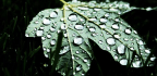 Details Inside Raindrops Hint At Future Water Sources