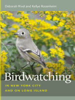 Birdwatching in New York City and on Long Island
