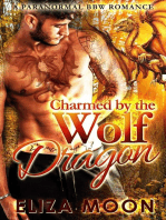 Charmed by the Wolf Dragon