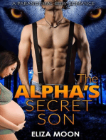 The Alpha's Secret Son