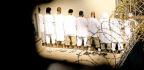 Is Guantanamo a Terrorist-Recruitment Tool?