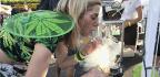 A Cannabis High, No Plant Required