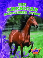 American Saddlebred Horse, The