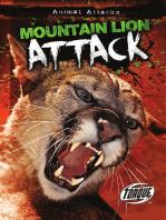 Mountain Lion Attack