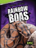 Rainbow Boas