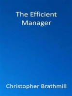 The Efficient Manager