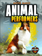 Animal Performers