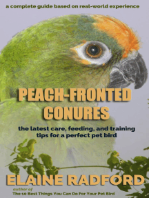 Peach-fronted Conures: The Latest Care, Feeding, and Training Tips for a Perfect Pet Bird
