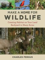 Make a Home for Wildlife