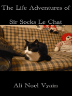 The Life Adventures of Sir Socks Le Chat