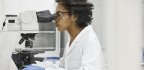 Female Scientists Receive On Average About $40,000 Less In Federal Funding