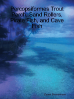 Percopsiformes Trout Perch, Sand Rollers, Pirate Fish, and Cave Fish