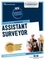 Assistant Surveyor