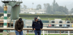 A Day After Latest Horse Death At Santa Anita, It's Anything But Business As Usual