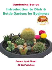 Introduction to Dish & Bottle Gardens for Beginners