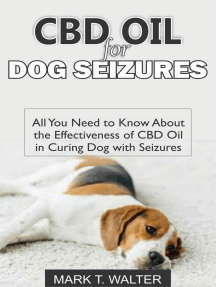CBD Oil for Dog Seizures: All You Need to Know About the Effectiveness of CBD Oil in Curing Dog with Seizures