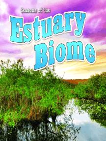 Seasons Of The Estuary Biome