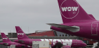 What To Do If You Have A Wow Airline Ticket