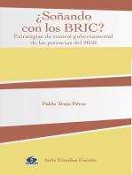 ¿Soñando con los BRIC?: Estrategias de control gubernamental de las potencias del 2050