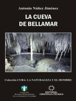 La Cueva de Bellamar