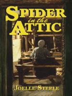 Spider in the Attic