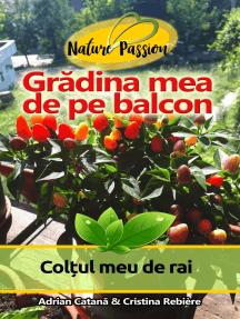 Grădina mea de pe balcon: Colțul meu de rai