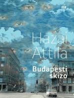 Budapesti skizo