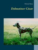 Dalmatiner Cäsar