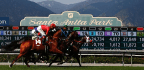 D.A. Forms Task Force To Investigate Horse Deaths At Santa Anita
