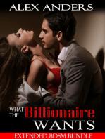 What the Billionaire Wants