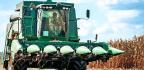 To Stop Wasting Fertilizer, Find Dud Spots In Corn Fields