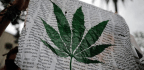 What Atlantic Readers Thought About Marijuana in the '90s
