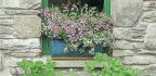 Make A Pallet Garden