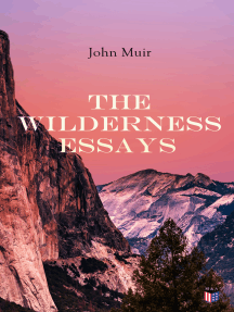 The Wilderness Essays