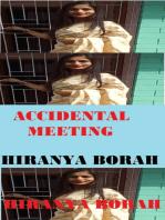 Accidental Meeting