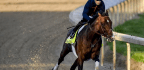 Kentucky Derby Favorite Omaha Beach Scratched From Race