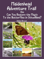 Maidenhead Adventure Trail One, Can You Restore the Magic to the Butterflies In Ockwelland?