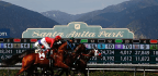 Horse Racing Industry Fights For Survival In Wake Of Deaths And Scrutiny