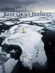 Base Orso Bianco