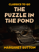 The Puzzle in the Pond