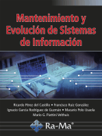 Mantenimiento y Evolución de Sistemas de información