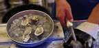 Sickness Linked To Raw Oysters From Mexico Spreads Beyond Southern California