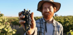 Why Some Wineries Are Becoming 'Certified B Corp' — And What That Means