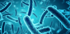 On the Link Between Lyme Disease and Bioweapons