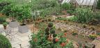 A Garden With An Italian Flavovr